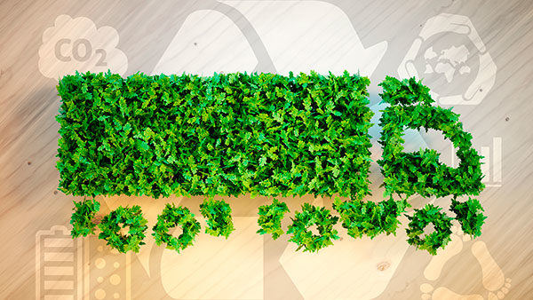 Logística verde