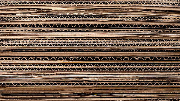 Cartón para palets