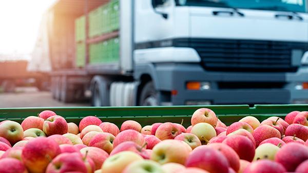 Producción de frutas